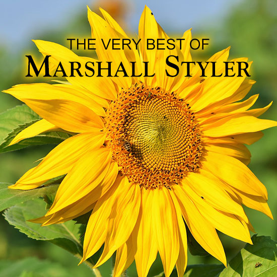 The Very Best of Marshall Styler